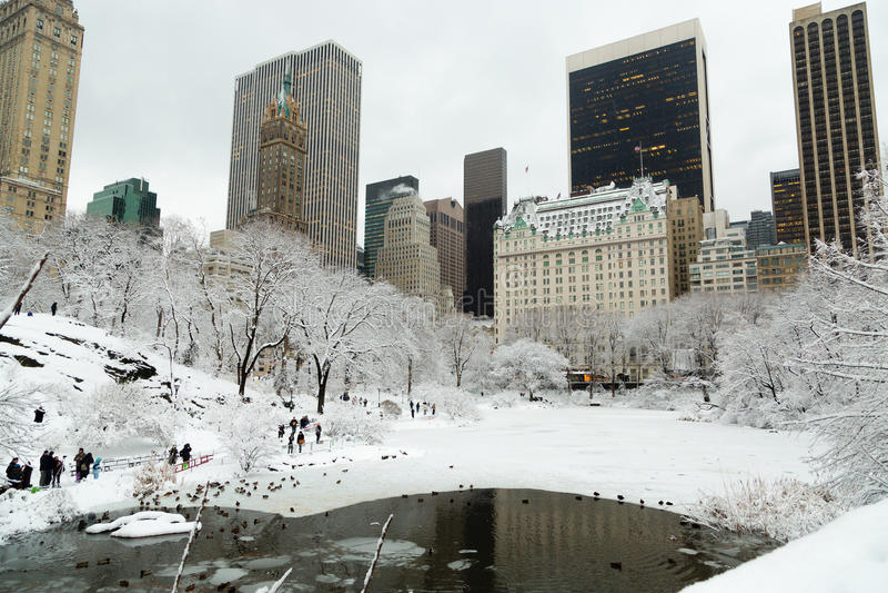 雪的纽约中央公园 免版税图库摄影