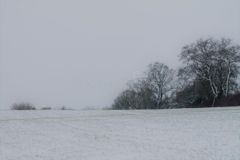 雪的Shimpling萨福克 图库摄影