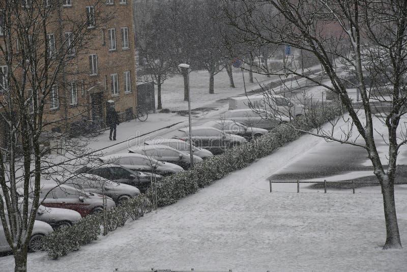 雪秋天天气在哥本哈根 库存照片
