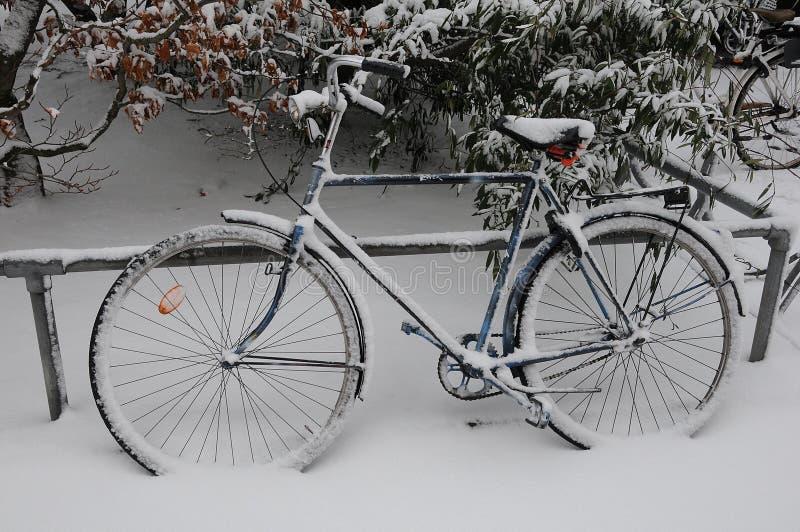 雪秋天天气在哥本哈根 免版税图库摄影