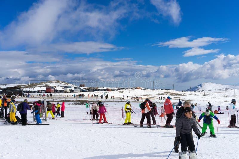 滑雪者享用雪在Kaimaktsalan滑雪中心,在希腊 rec 图库摄影