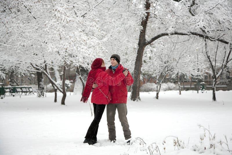 雪舞蹈 图库摄影
