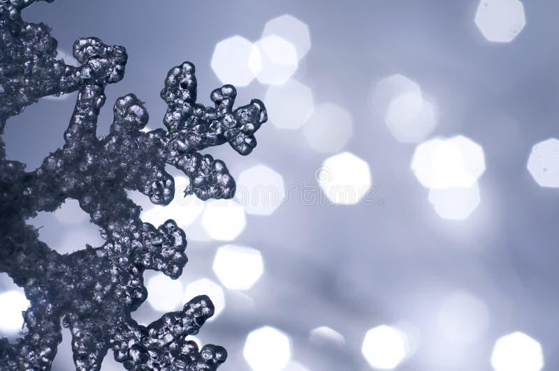 雪花冬天 库存照片