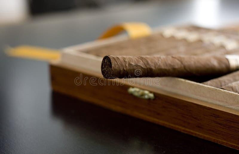 雪茄古巴人 免版税库存照片