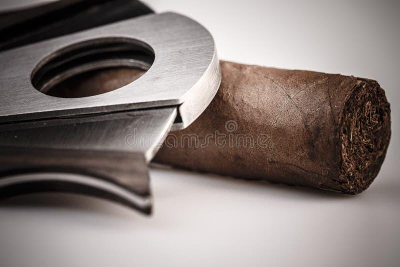 雪茄和切削刀在白色背景 库存图片