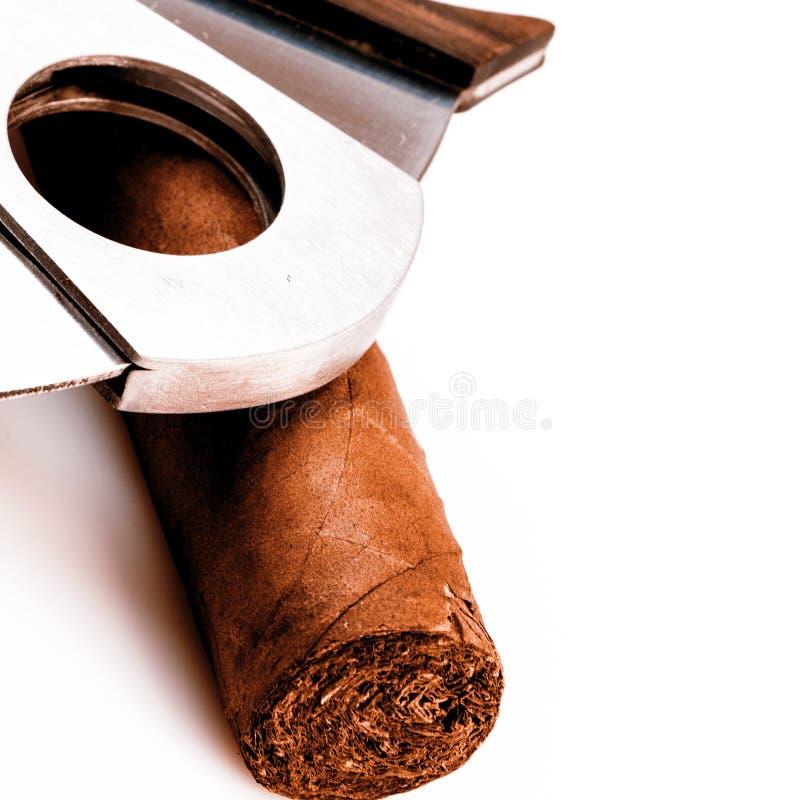 雪茄和切削刀在白色背景 库存照片