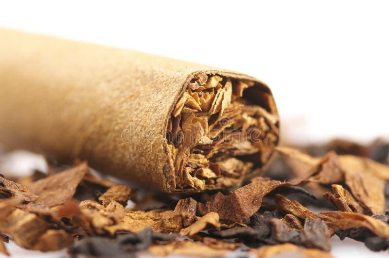 雪茄和烟草 图库摄影