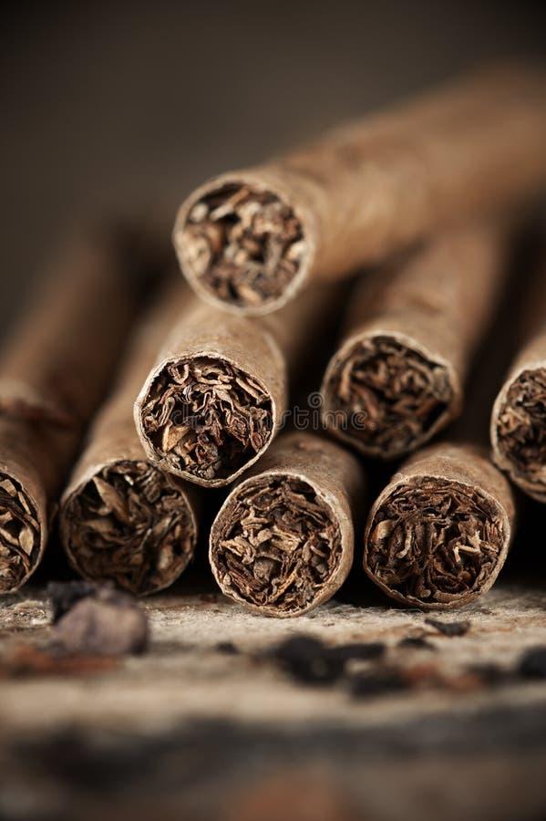 雪茄在木头堆 免版税库存照片
