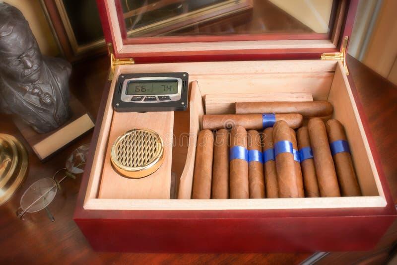 雪茄雪茄盒 图库摄影