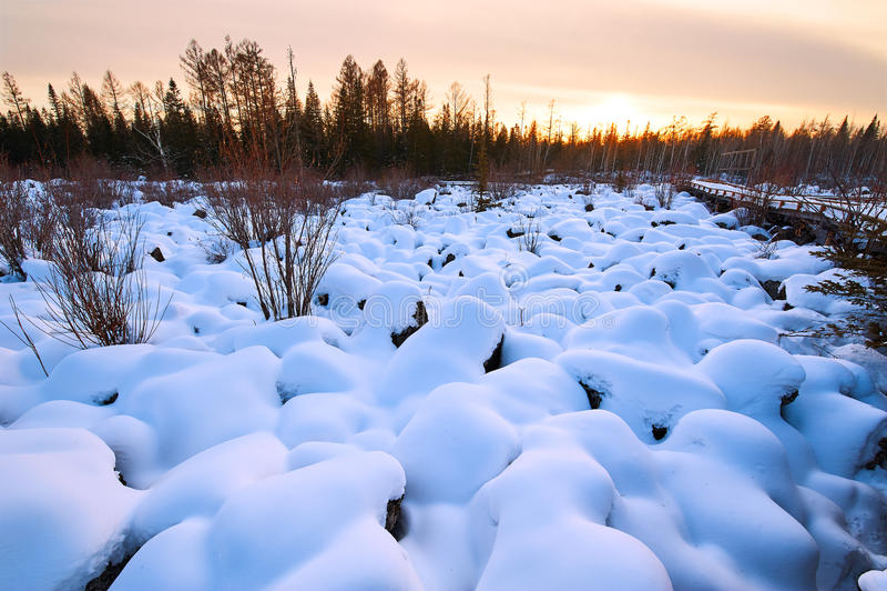 雪蘑菇日落 库存图片