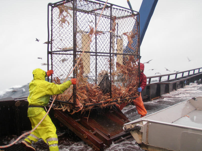 雪螃蟹渔在白令海 免版税库存图片