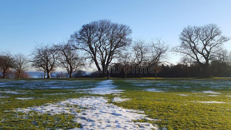 雪补丁 库存照片