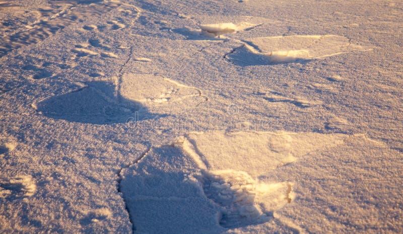 雪表面  免版税库存照片