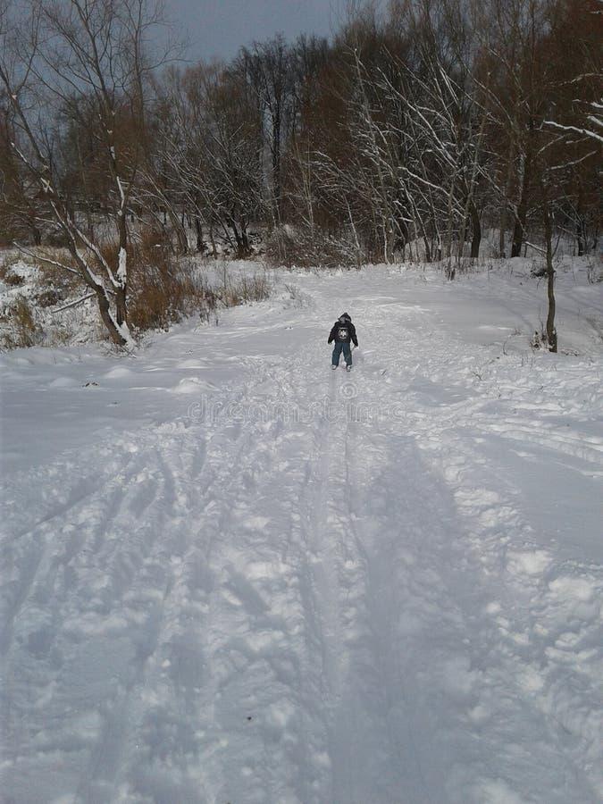 滑雪训练 库存照片