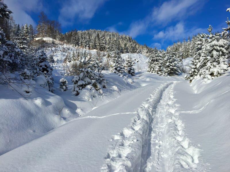 雪足迹,人做的道路游览在滑雪在晴朗的冬天 图库摄影