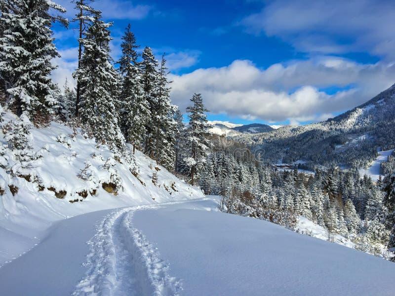 雪足迹,人做的道路游览在滑雪在晴朗的冬天 免版税库存照片