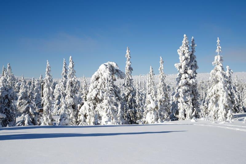 滑雪轨道视图 库存图片