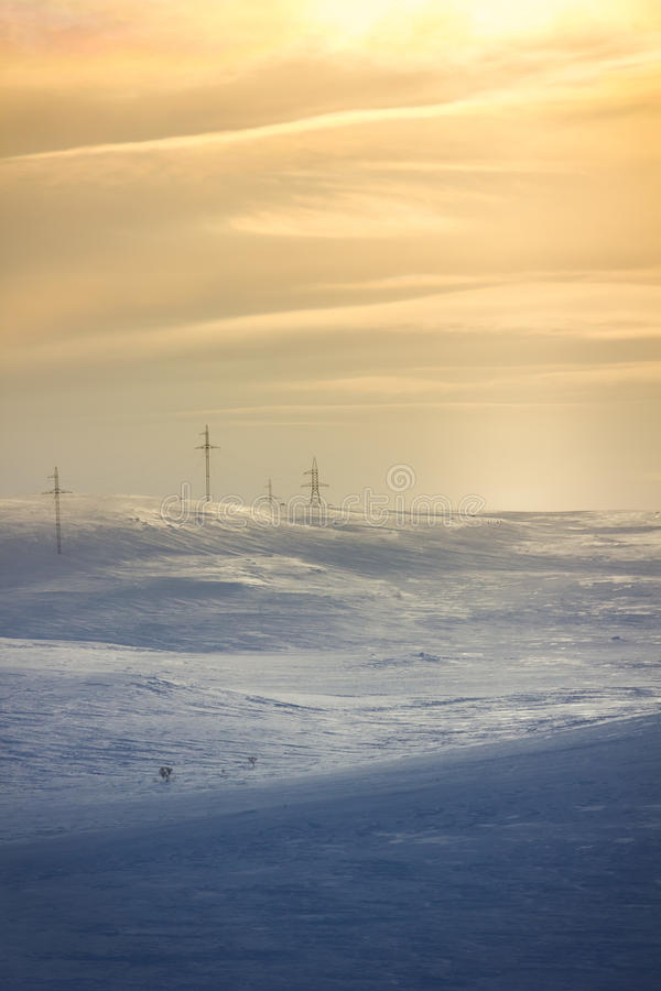 雪输电线 免版税库存图片