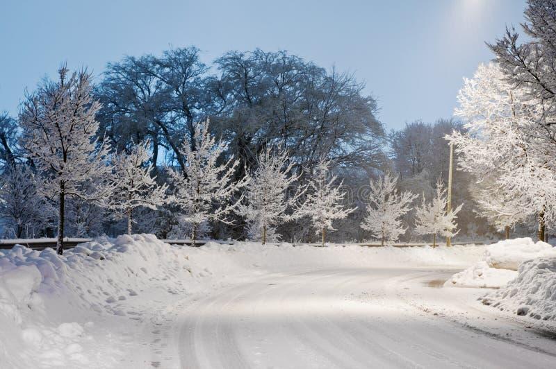 雪道在晚上 免版税库存图片