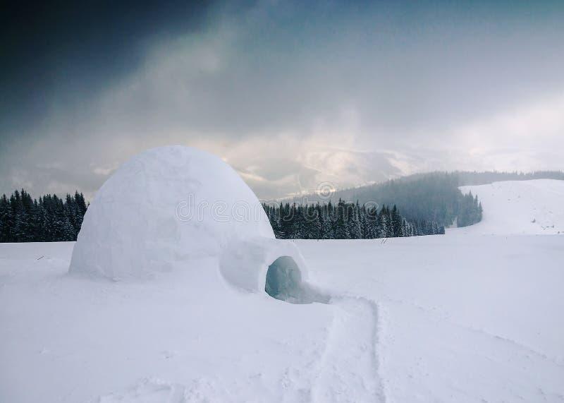 雪风雨棚园屋顶的小屋 免版税库存照片