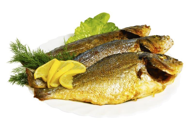 雪鱼, dorado烤了与在板材的绿色,被隔绝 免版税库存图片