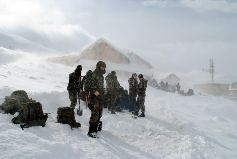 雪崩杀害九个人 库存照片