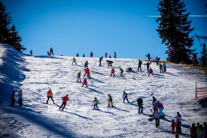 滑雪Paltinis 免版税库存图片