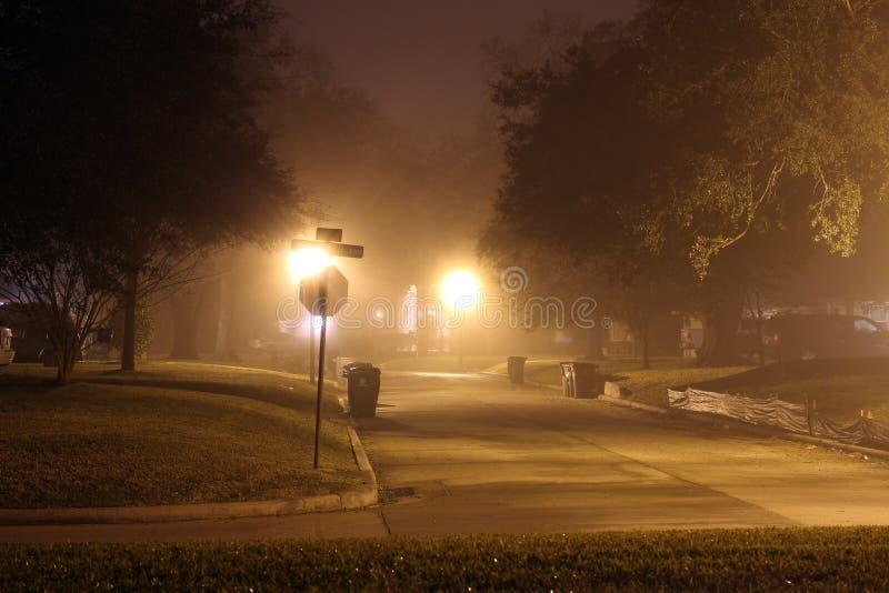雾吞噬住宅街道 免版税库存照片
