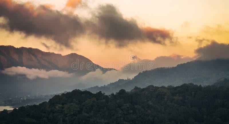 雾和云彩山森林 免版税库存照片