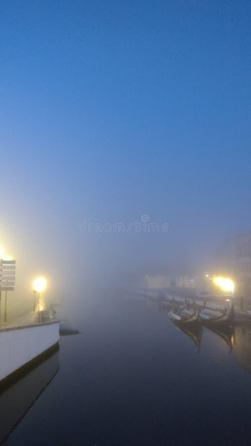 雾和湖 库存图片
