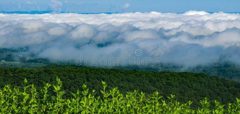 雾完全地盖的雪伦多亚河谷 免版税库存照片