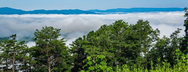雾完全地盖的雪伦多亚河谷- 2 免版税图库摄影
