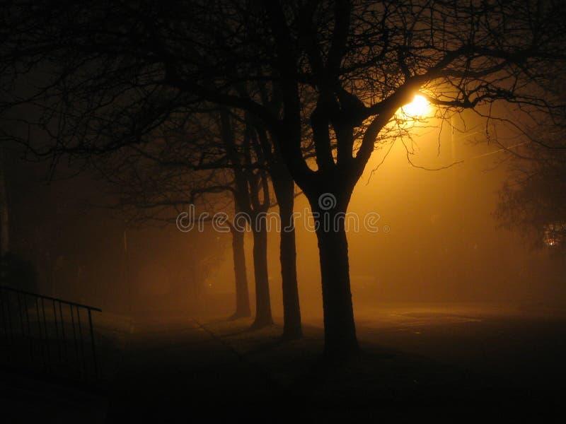 雾晚上 库存照片