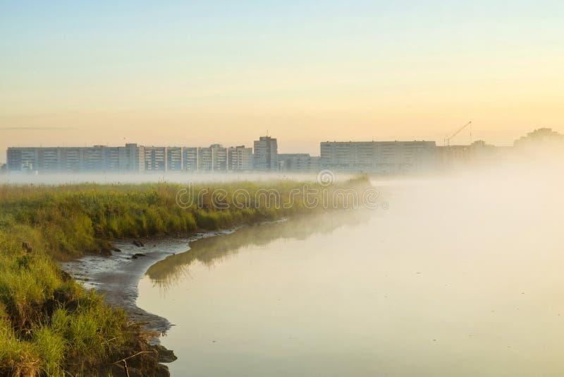 雾有薄雾的早晨 免版税库存图片