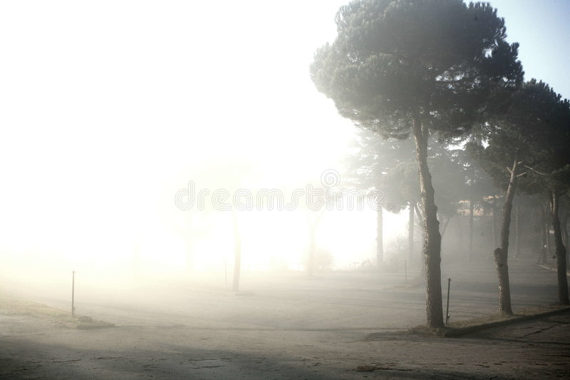 雾横向 图库摄影