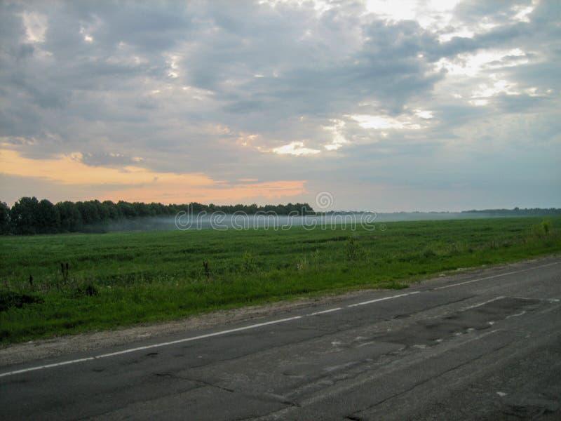 雾横跨沿路的领域传播 免版税图库摄影