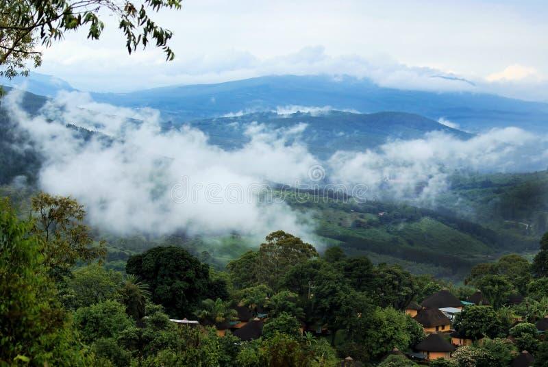 雾气卷进南非马戈巴斯科洛夫山谷 库存照片