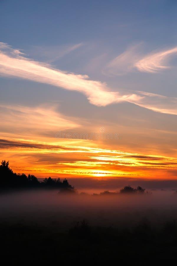 雾溢出  库存照片
