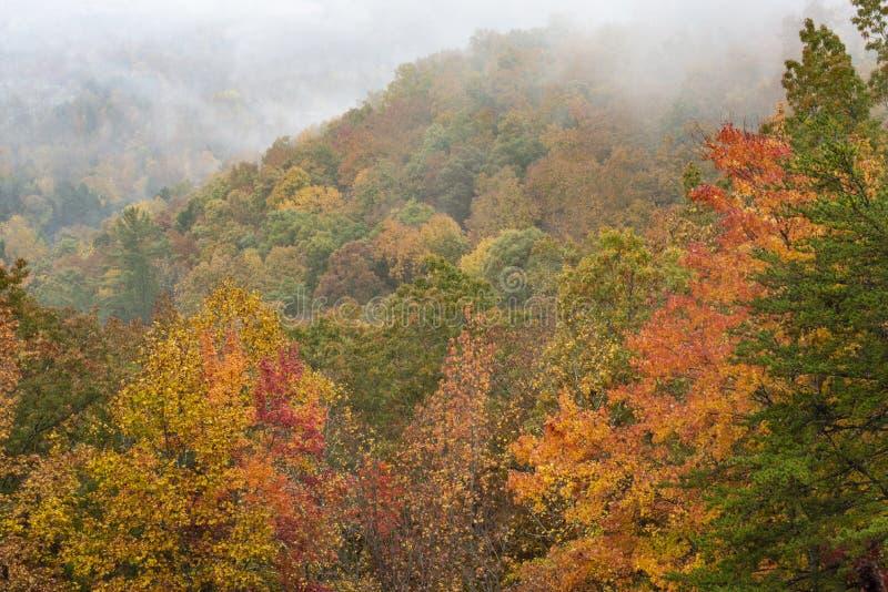 雾说谎在发烟性山秋季的一个谷 库存照片