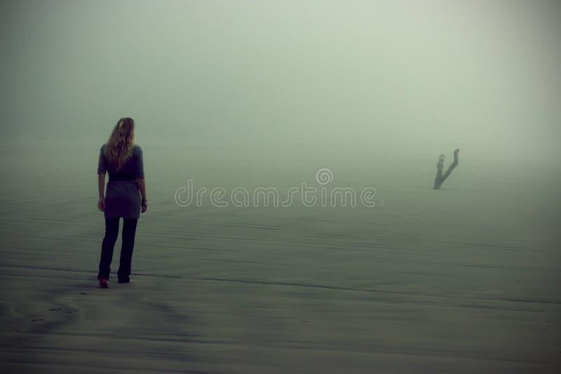 雾走 免版税库存照片