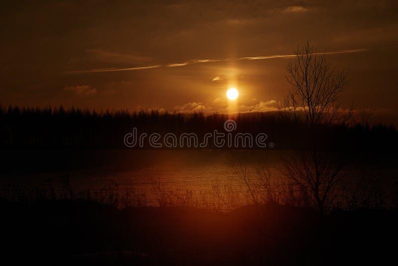 雾,晚上,黎明,树,剪影,河,夜,光,黄昏 免版税图库摄影