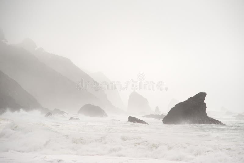 雾mendocine岩石岸 库存图片