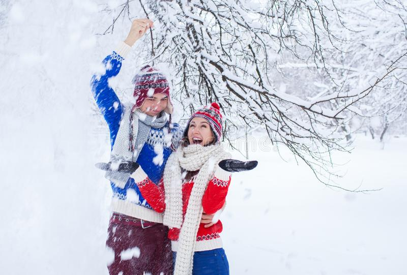 震动与雪的夫妇一个树枝 免版税库存照片