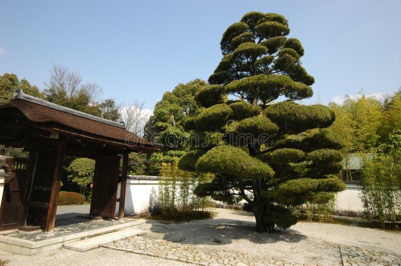 霍安茶道议院在Inuyama,日本 免版税库存图片