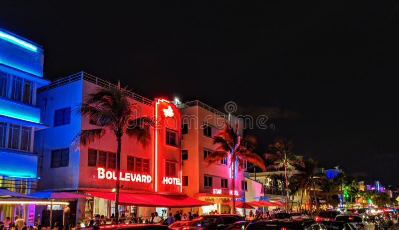 霓虹迈阿密海滩旅馆 免版税库存图片