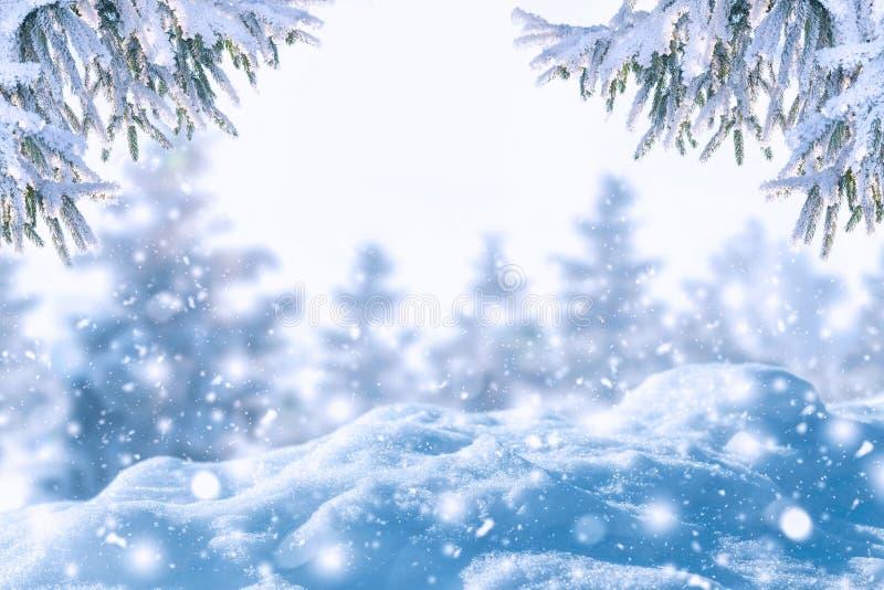 霜冷杉分支和降雪冬天背景  新年bac 免版税库存照片