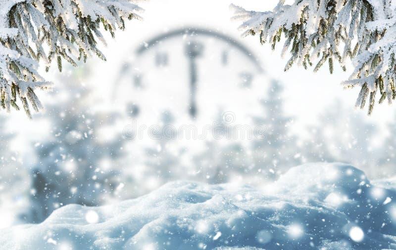 霜冷杉分支和降雪冬天背景  免版税图库摄影