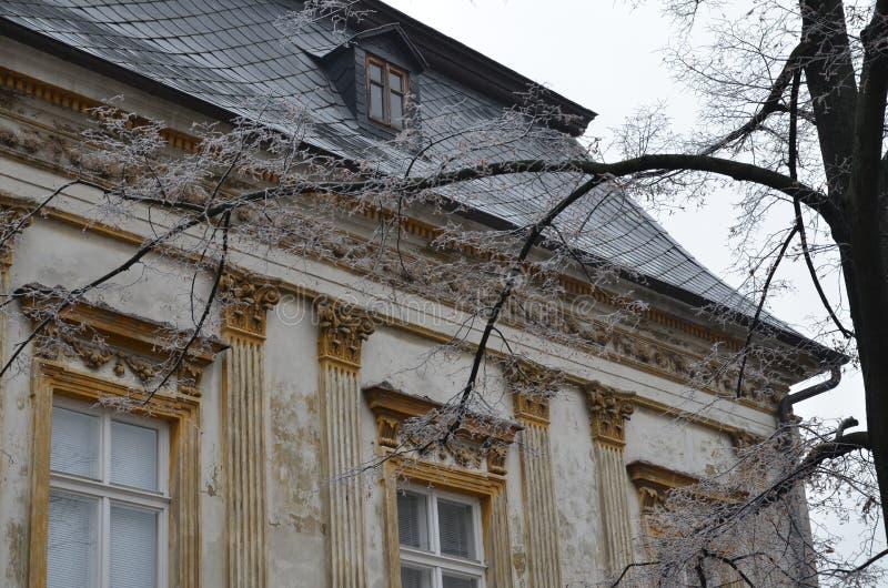 结霜的树和历史建筑 库存照片