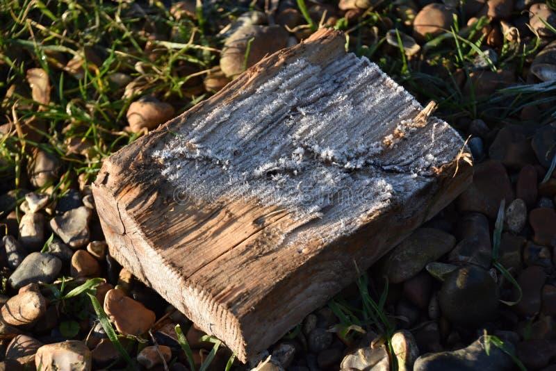 霜钉在木头的 库存照片