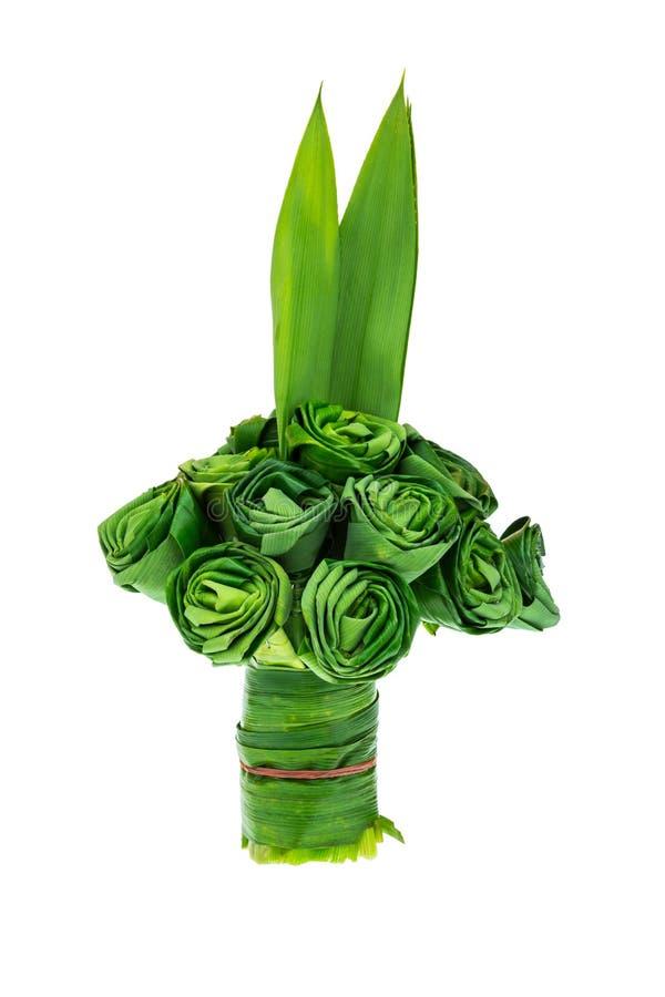 露兜树棕榈叶是被折叠的玫瑰 免版税库存照片